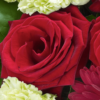 Heavenly Red Rose Hand tied 05