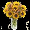 Sunflower Hand tied 06