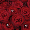 Ultimate 100 Grand Prix Rose Hand tied 02