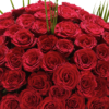 Ultimate 100 Grand Prix Rose Hand tied 05