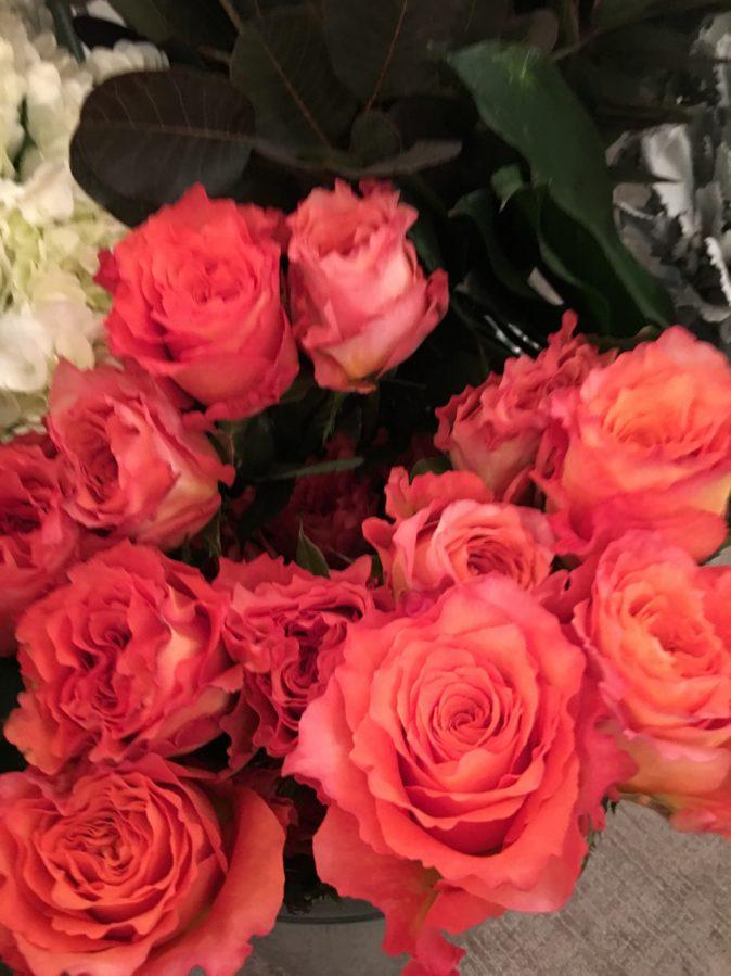 Rose for All